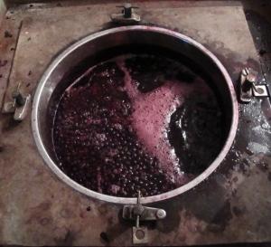 Proceso de fermentación